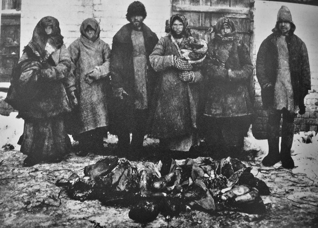 Медицинская помощь иностранных благотворительных организаций в период голода в Поволжье в 1921–1922 годах