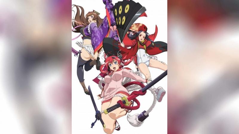 Девушки-самураи (2010) | Hyakka Ryoran: Samurai Girls