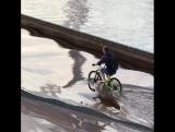 Тюменский велосипедист прокатился по затопленной набережной