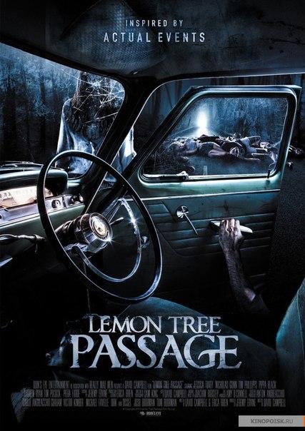 Последний поворот / Lemon Tree Passage (2015)