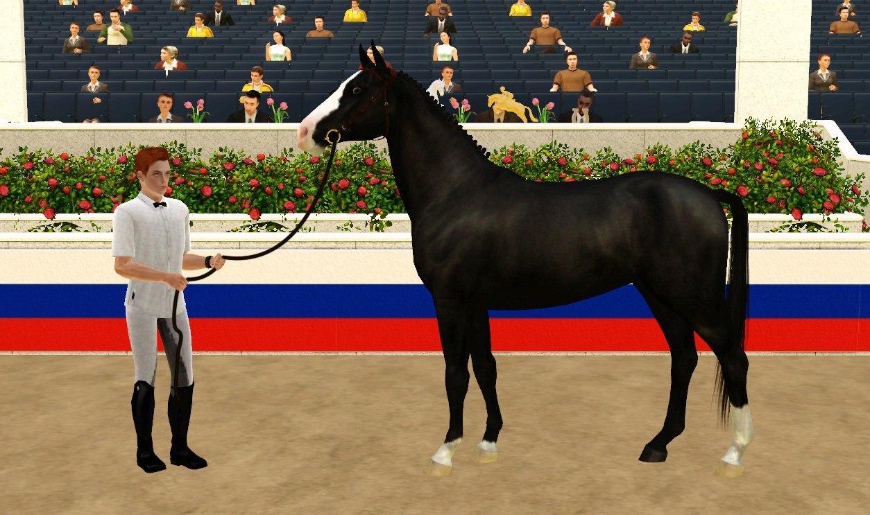 Регистрация лошадей в RHF 2 - Страница 4 UX9wuc3sD4U