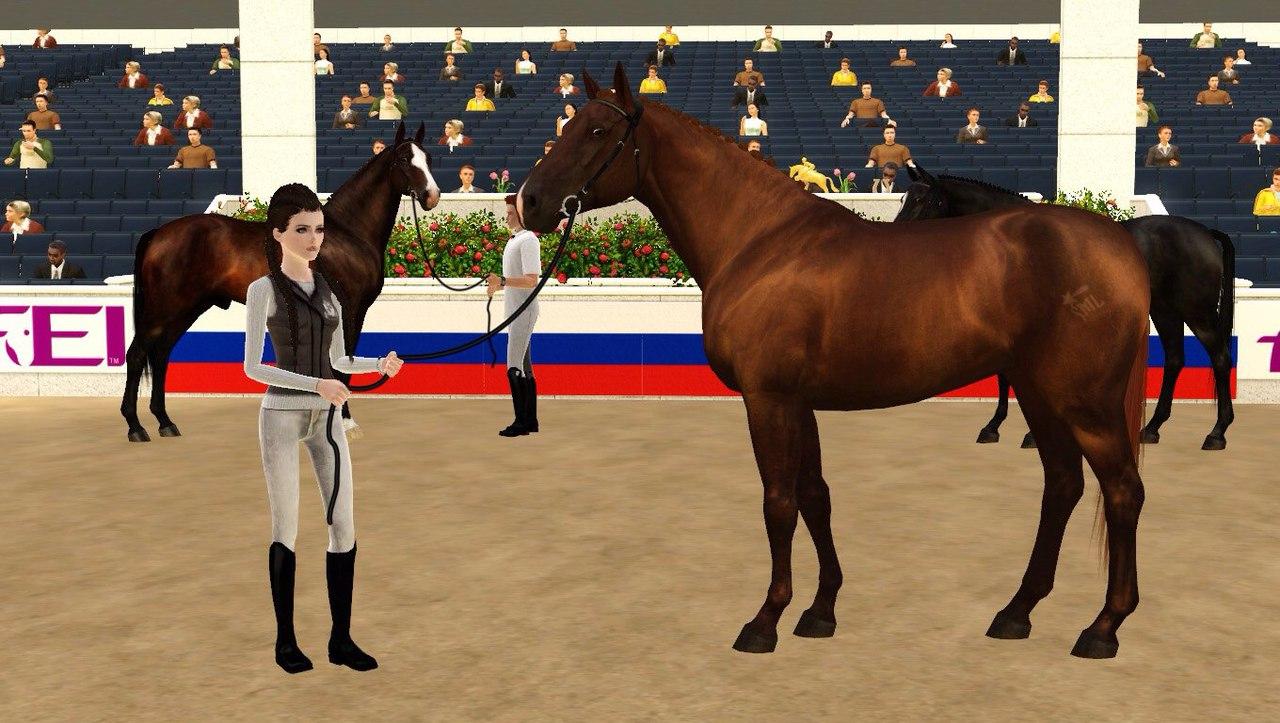 Регистрация лошадей в RHF 2 - Страница 5 WHXvRZPUIkQ