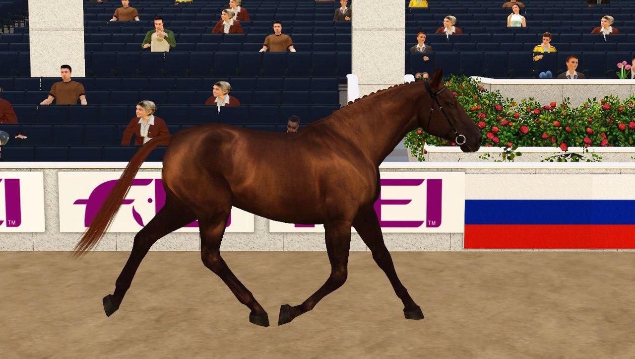 Регистрация лошадей в RHF 2 - Страница 5 Vyd8SttZ2uQ