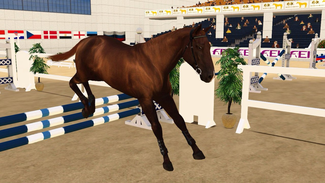 Регистрация лошадей в RHF 2 - Страница 5 HInFfwP-i0Y