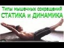 Комплекс изометрических упражнений с собственным весом Типы мышечных сокращений Статика и Динамика