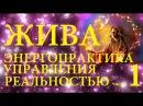 Владимир Куровский ЖИВА ОСНОВЫ РАБОТА ЧАР