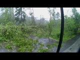 В Москве прошел ураган подул сильный ветер 29 мая во дворах покалило деревья 29.05.2017