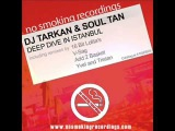 dj tarkan and soul tan - deep dive in istanbul (16 bit lolitas diving in different waters remix)