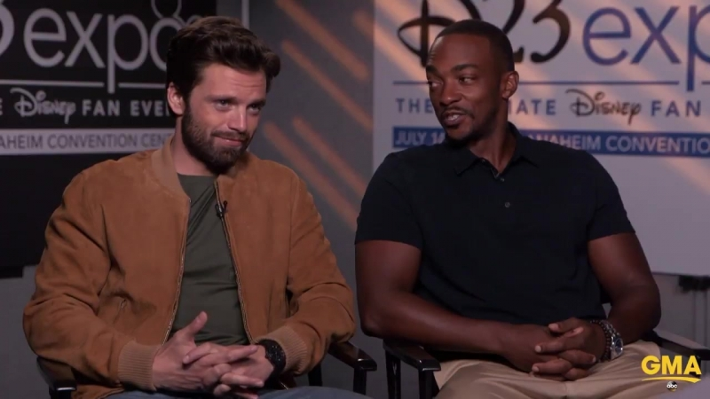 Winter Solider/Bucky Barnes is NOT in the Black Panther according to Sebastian Stan. Avengers: Infinity War | D23 Expo