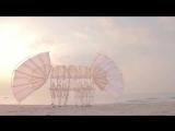 Движимые ветром «пляжные животные» Тео Янсена