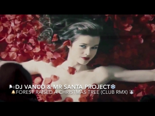 DJ Vanco & Mr Santa Project - Forest Raised a Christmas Tree (club rmx)
