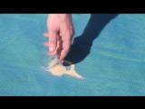 ClapSand - самоочищающаяся от песка пляжная подстилка
