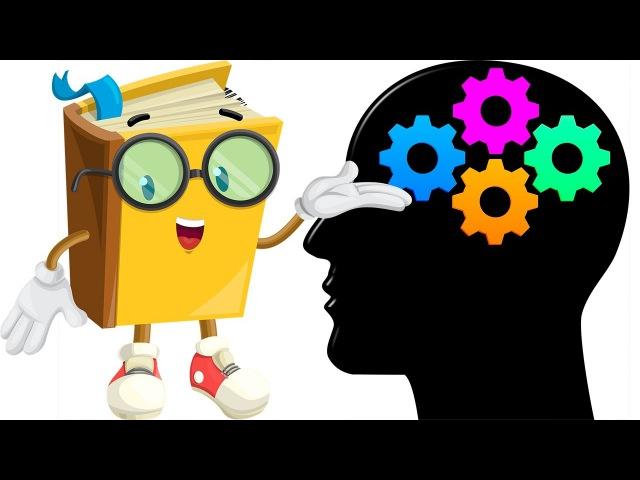 11 подарков для мозга которые нужны ему каждый день – Как заставить мозг думать на полную катушку