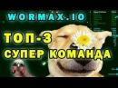 Между топом и дном в вормаксе с Леной Wormax.io with Lena
