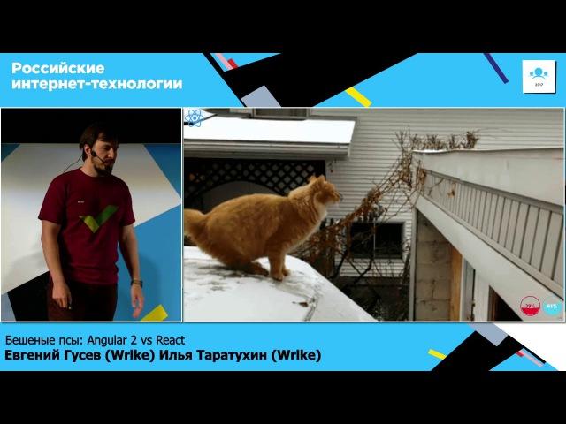 Бешеные псы: Angular 2 vs React / Евгений Гусев (Wrike), Илья Таратухин (Wrike)