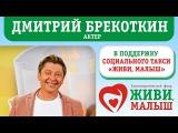 Дмитрий Брекоткин в поддержку проекта Социальное такси