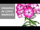 Copic markers speed drawing 5 / Рисую маркерами Copic красивый цветок