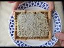 Сотовый мед - самый лучший продукт пчеловодства
