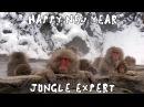 Новогодний - Эксперт по Джунглям 10 Видеочат 18