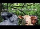 Отпускаю грехи - Эксперт по джунглям 2 Видеочат 18