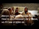 Иисус Я отдаю жизнь Мою Никто не отнимает ее у Меня но Я Сам отдаю ее Иоанна 10 17 18