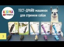 Обзор машинки для стрижки собак Moser 1245, 1250, Wahl KM2, KM5, KM10. Тест-драйв!