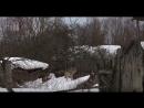 Vlci v Černobylu Dokument cz hd 1080p
