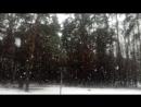 Гигантские снежные хлопья. Красногорск, 03.04.2017.