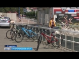 Велосипедисты и пешеходы не поделили дорожку