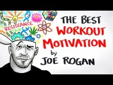 The Best Workout Motivation Ever - Joe Rogan