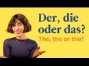 няша-стесняша учит немецким артиклямдер, ди, дас