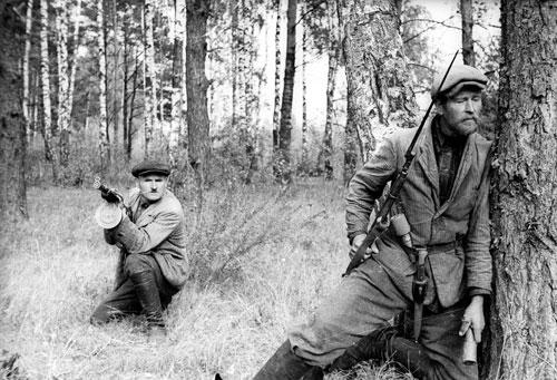 Сколько советских граждан стали партизанами во время