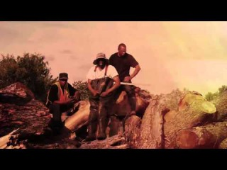THE MTN MAN • THE ALLIGATOR'S BELLY • PROD BY K DEF