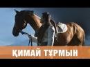 ТОРЕГАЛИ ТОРЕАЛИ КИМАЙ ТУРМЫН премьера песни 2016