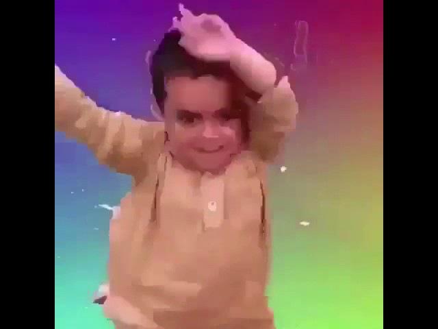 Dancing brazil dog meme