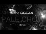 PALE CROW - The Ocean (cover by Sell the Ray feat. Violin Bliss of DFMA)