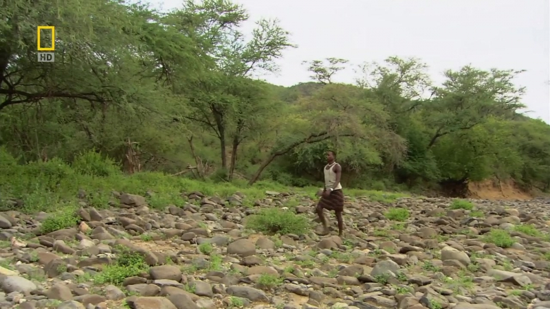 Dich-national.geographic.tribal.odyssey.the.pokot.the.path.to.manhood.720p.hdtv.x264