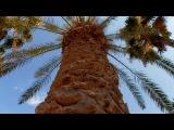 Cavo Maris Beach Hotel 4, о.Кипр