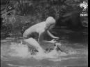 Young Girl Battling With Crocodiles (1932)| History Porn