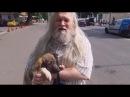 Волшебник нашел самые добрые руки для бездомной собаки Найды