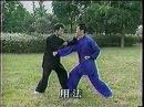 Син и цюань 形意拳真髓(王树金)