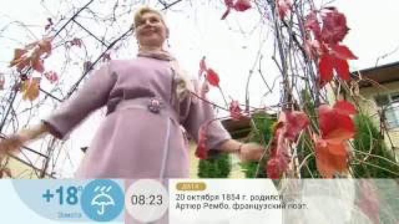 Ольга Никишичева   Классическое Пальто из драпа