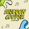 """SHELDON COOPER"" cover band/кавер-бэнд (Минск)"