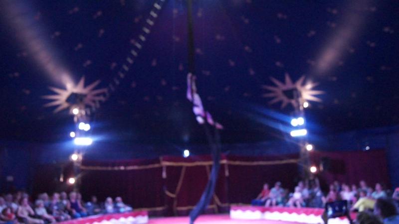 Полотна, Анастасия Целковская, детский образцовый цирковой коллектив Пилигрим