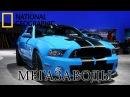 Мегазаводы - Mustang