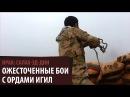 Ирак. Боевые действия в провинции Салах-эд-Дин Iraq. The fighting in Saladin province