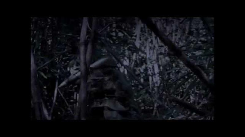 Вьетнам в HD Затерянные хроники вьетнамской войны 2 Найти и уничтожить History Channel