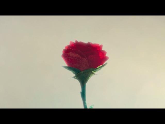 Depeche Mode - Enjoy The Silence '93 (Music Video)