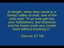 معجزة علمية. نملة تثبت أن القرآن من الله Ants Defeat Atheism