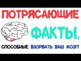 Потрясающие факты, способные взорвать ваш мозг! Часть 2